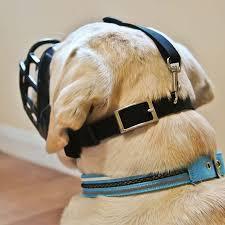 Comfortable Dog Collars Baskerville Ultra Dog Muzzle Flexible Comfortable Basket Muzzle