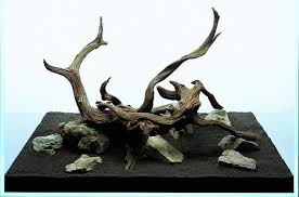 aquascaping layouts with stone and driftwood let s start with q layout creation aquascaping wiki