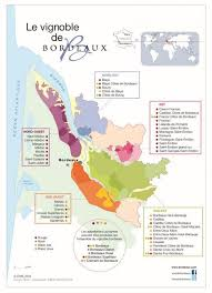 cannes si鑒es 114 best wine vine infographics images on vineyard