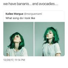 Memes Tumblr - several very small mangoes hi guys what are your resolutions for