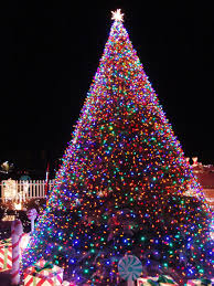 lights tree hd wallpapers recycling