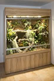 large reptile terrariums diy reptile terrarium pinterest