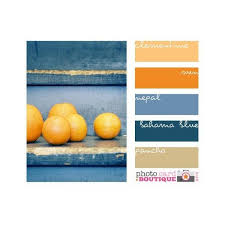 orange spice color color spice design seeds liked on polyvore featuring home and