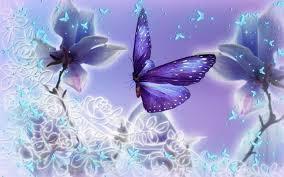 wallpaper of butterflies 71 images