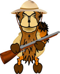 clipart comic camel discoverer