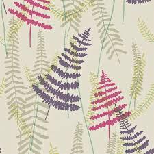 scion plant athyrium wallpaper