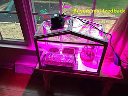 horticultural led grow lights glw 10w led grow light insteading
