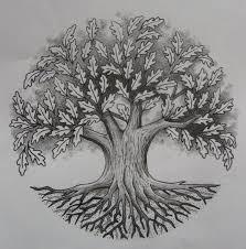 best 25 oak tree ideas on tree tattoos tree