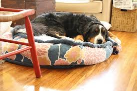 Diy Dog Bed Cool Diy Dog Beds With A Fancy Twist