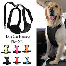 xxs dog harness Fashion online sale at NewChic