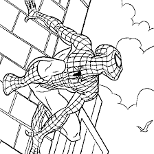 spider coloring pages ngbasic