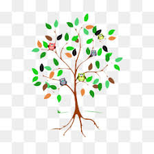 creative trees png images vectors and psd files free