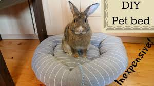 Rabbit Beds Diy Inexpensive Pet Bed Youtube