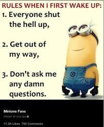 Minion Meme Images - minion memes minionmemess twitter