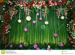 wedding backdrop grass green nature backdrop stock photo image of arrangement 24996754