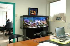 aquarium bureau aquarium services aquariums eau de mer