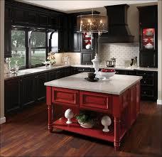 Dark Shaker Kitchen Cabinets Kitchen Shaker Style Kitchen Cabinets Black Cabinets With White