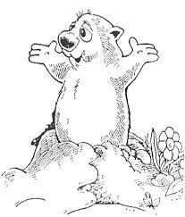 10 groundhog coloring images coloring