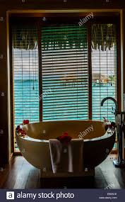 interior view of overwater bungalow suite with plunge pool four