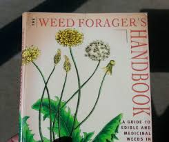 australian native medicinal plants the weed forager u0027s handbook a guide to edible and medicinal weeds