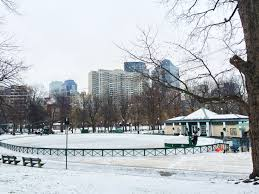 winter morning stroll in boston public garden and outdoor ice