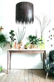 floor plants home decor home decor plants home plants decor indoor plants design in the