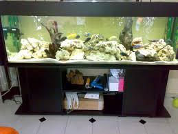 idee deco aquarium pecera para cíclidos con tapa y mueble fish tank peceras