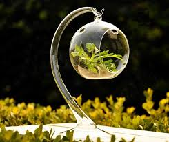 hanging glass terrarium globe with glass stand u2013 micro landscape