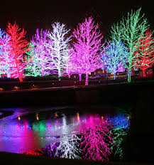 Christmas Lights In Okc 1113 Best Oklahoma Images On Pinterest Pistol Pete Pistols And