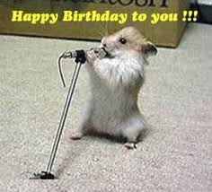 happy birthday singing best birthday quotes happy birthday song in this meme a
