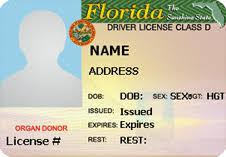 Florida Drivers License Template 25 images of florida drivers license template adornpixels