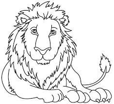 imagenes de animales carnivoros para imprimir animales carnivoros para dibujar imagui