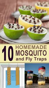 Homemade Fly Trap by 10 Ingenious Diy Mosquito And Fly Traps