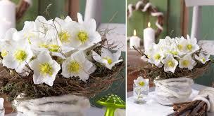 Petites Compositions Florales Composition Florale De Noël Roses Avalanche Eucharis Et Thym