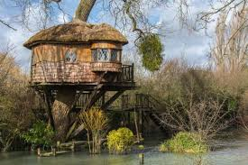 23 epic tree houses that will bring out your inner child blazepress