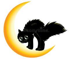 black cat on moon stock vector illustration of magic 34338490