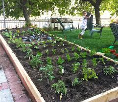 Ideas For Backyard Gardens Backyard Vegetable Garden Ideas Gardening Design
