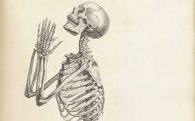 old anatomy drawings beautifully strange u2022 lazer horse