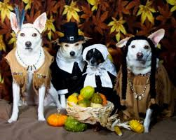 thanksgiving photographs inotternews