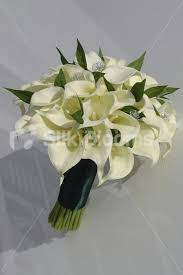 Silk Calla Lilies Shop Lovely Bridal Bouquet W Ivory Calla Lilies And Jasmine