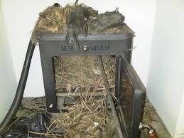 chimney flue for wood burner design karenefoley porch and