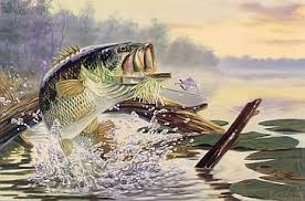 %pesca%sepesca