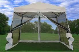 Patio Tent Gazebo Screened Canopy Canopy