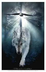 wolf i see shape shifting carpthian wonderful wolves