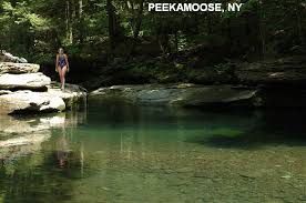 swimmingholes info new york swimming holes and springs rivers