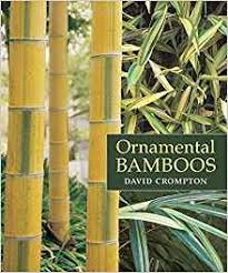 ornamental bamboos david crompton 9780881927900 books