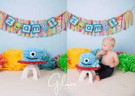 baby u0027s first birthday monster themed cake smash session