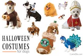 Halloween Costumes For Dogs Diy Dog Costumes Carrie Elle