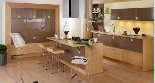 Popular Color For Kitchen Cabinets Popular Kitchen Designs U2013 Home Design Inspiration