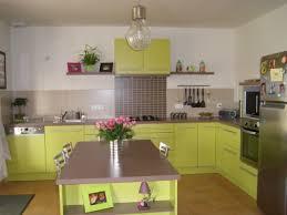 meuble cuisine vert anis deco pour cuisine verte idée de modèle de cuisine